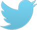 1385488324_bird_twitter_new_single